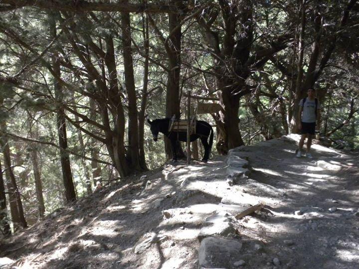 gole di samaria trekking crete creta island