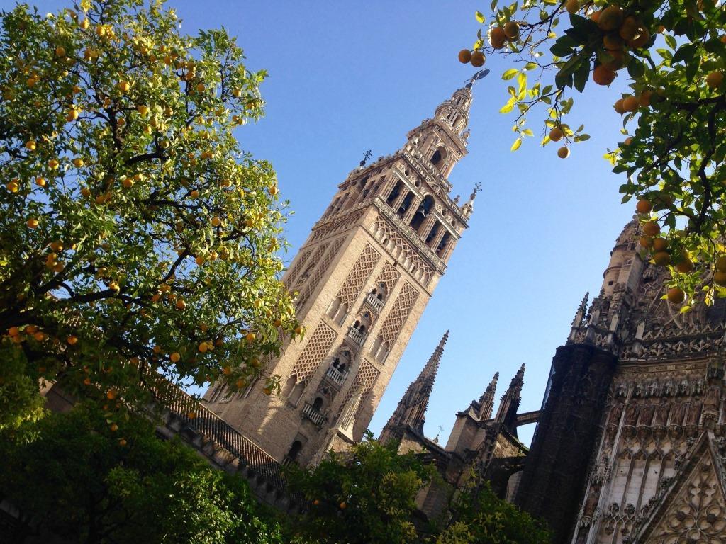 giralda cattedrale siviglia spagna spain