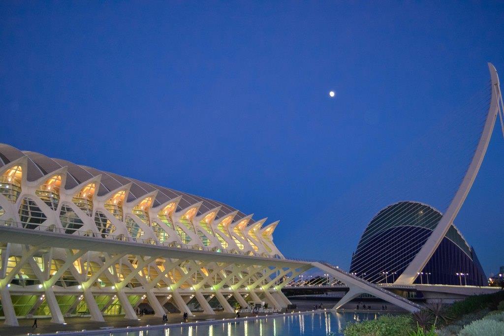 Museo arti e scienze valencia