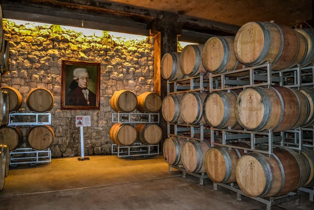 barone pizzini vino franciacorta biologico cantina 3