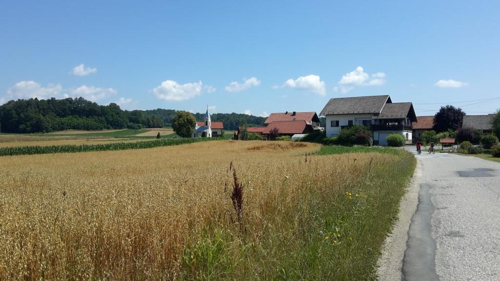 viaggiare in auto in slovenia