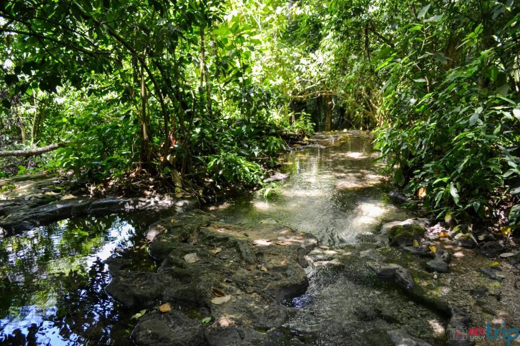 Chichen itza siti maya le rovine del messico