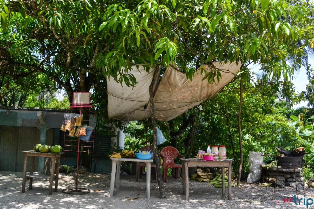 strada palenque san cristobal de las casas
