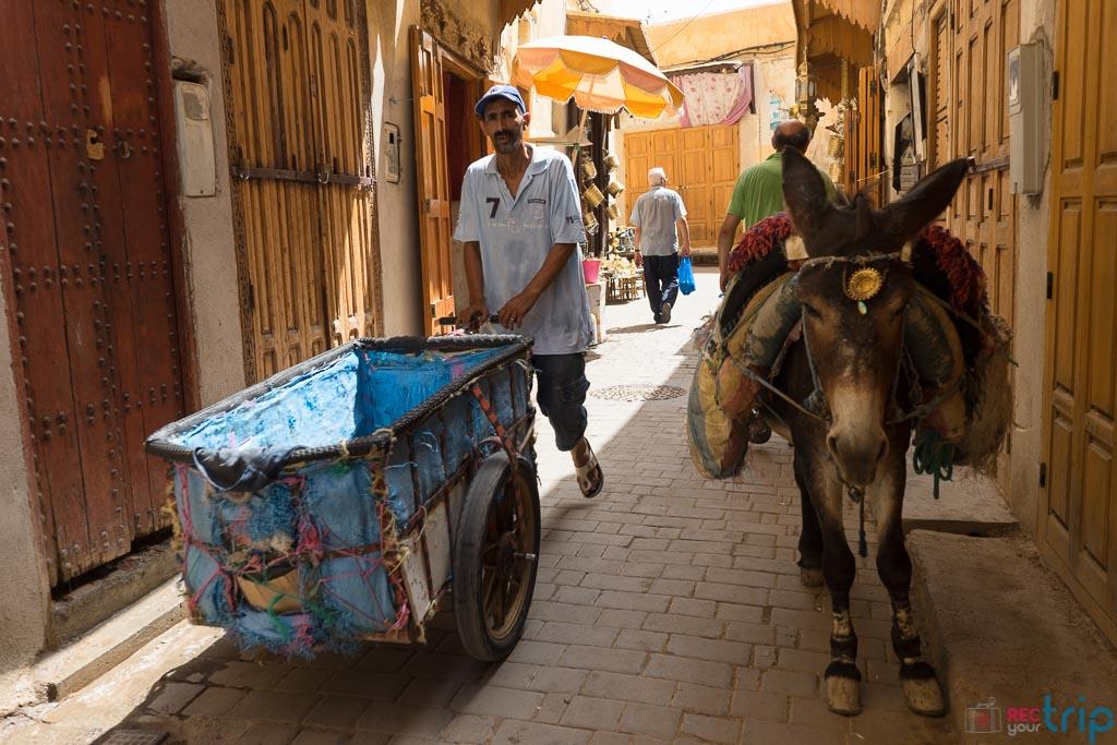 Fez marocco