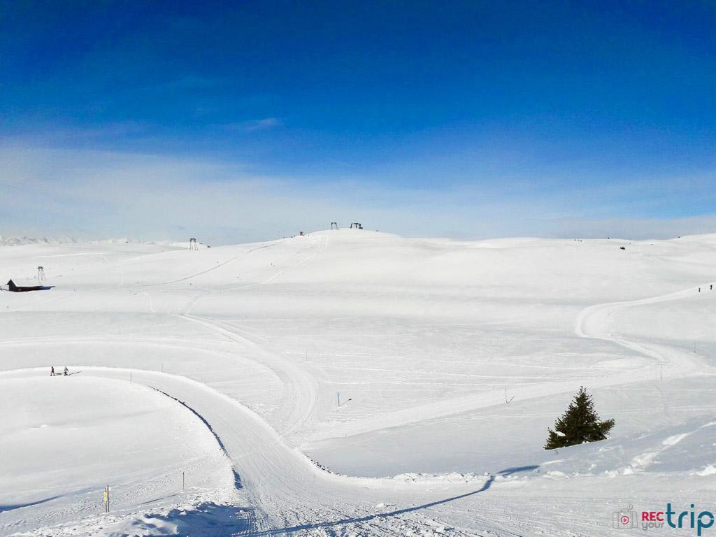 piste da slittino alpe di siusi