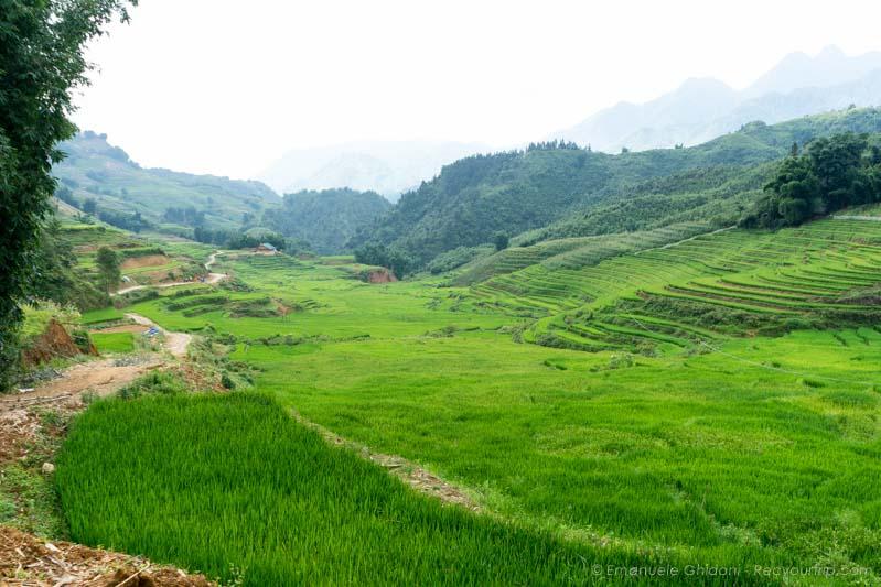 sapa vietnam del nord