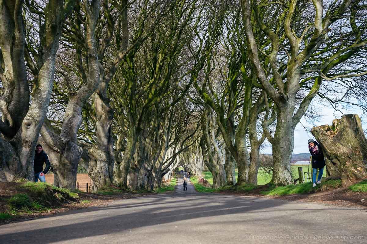una delle cose da vedere in Irlanda del Nord