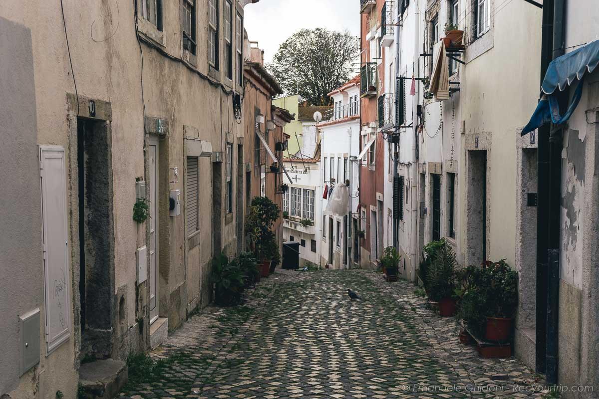 Alfama tra le cose da vedere a Lisbona