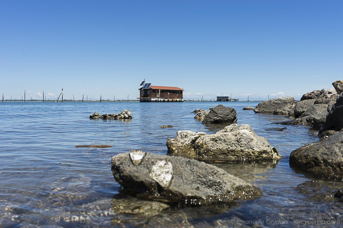 paesaggi dell'isola di albarella
